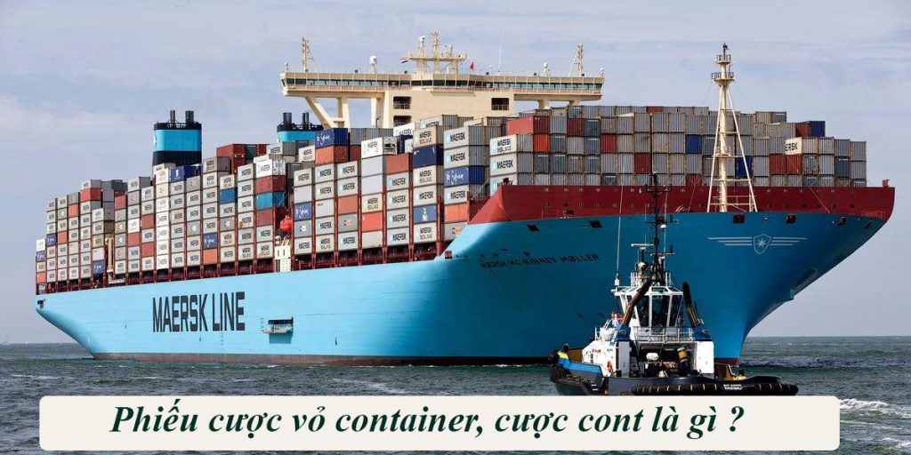 Cược Cont là gì, Phiếu Cược Cont, Thủ Tục Cược Vỏ Cont Với Hãng Tàu